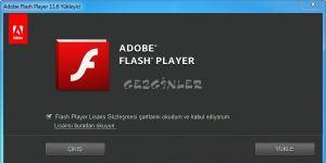 Adobe Flash Player Internet Explorer