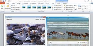 Microsoft Office 365 indir