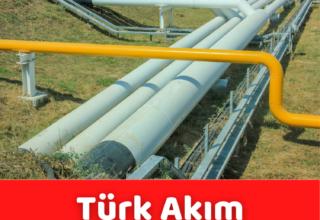 TürkAkım'dan Avrupa'ya 2020'de 5,8 milyar metreküp gaz taşındı