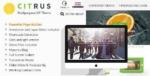 Citrus – Creative One Page Multi-Purpose Tema