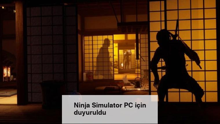 Ninja Simulator PC için duyuruldu