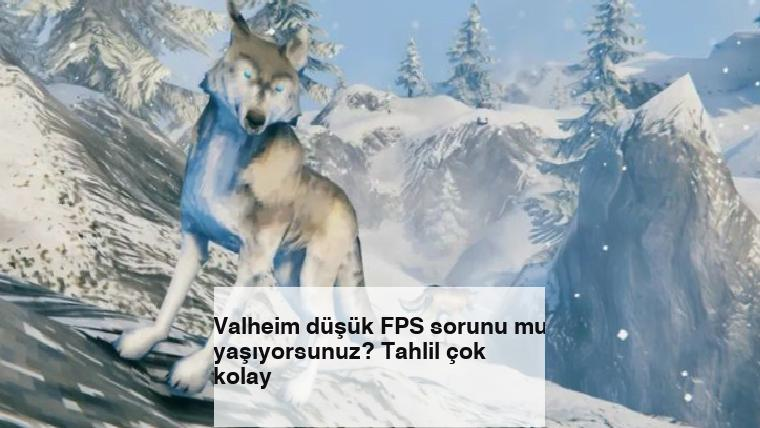 Valheim düşük FPS sorunu mu yaşıyorsunuz? Tahlil çok kolay
